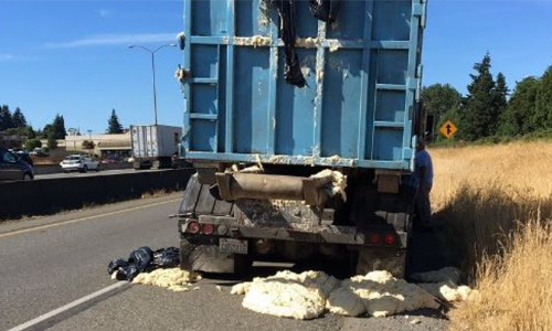 """A comedy of errors"" led to a freeway being covered in rising bread dough earlier this week."